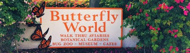 butterflyworldheader